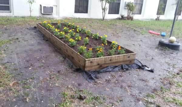 We finished the school garden.