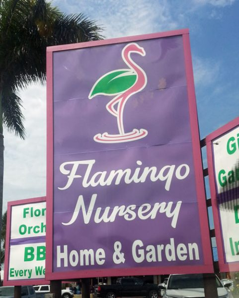 Thank you Flamingo Road Nursery for helping us with soil and plants!