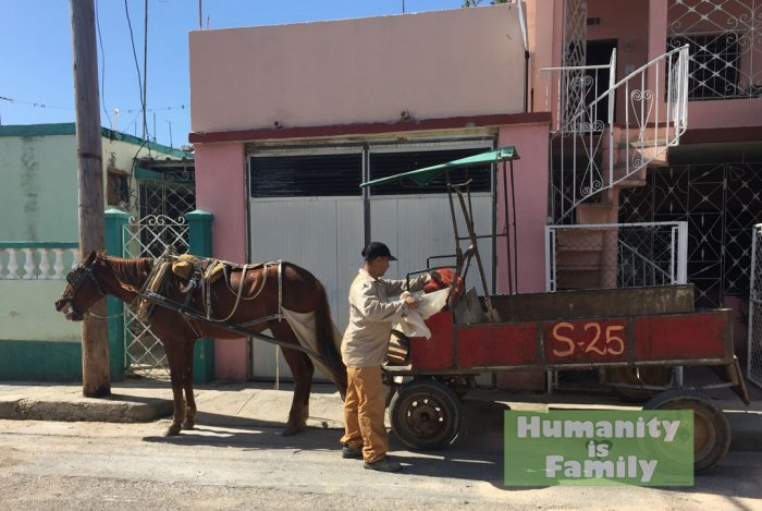Local workers' horse and cart-Cuba